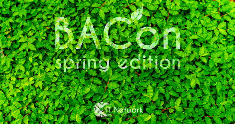 Изображение к IT Network BACon: spring edition