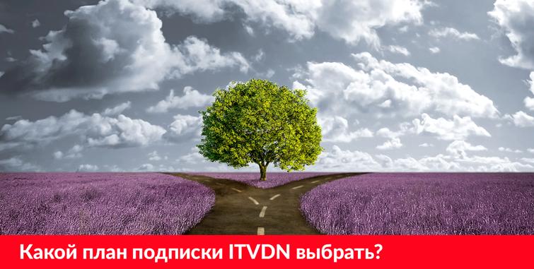 Какой план подписки ITVDN выбрать?