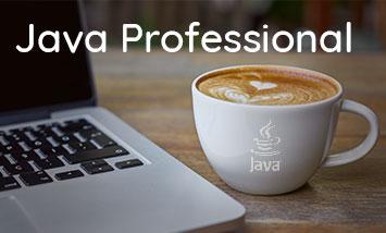 Курс Java Professional