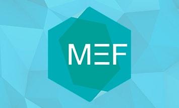 Курс Платформа Managed Extensibility Framework (MEF)