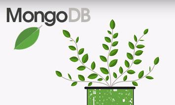 Курс Основы MongoDB