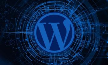 Курс WordPress Базовый