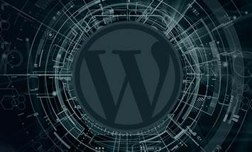 Курс WordPress Стартовый