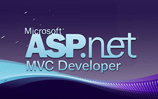 ASP.NET MVC Developer